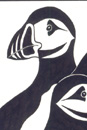 Pen and Ink Drawing of Stylised Puffins